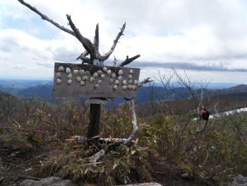 02ハマグリ山.jpg