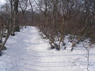 04すぐに雪道へ.jpg