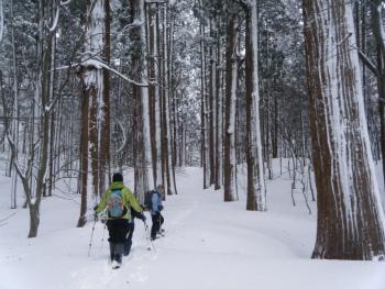 04雪の石段.jpg