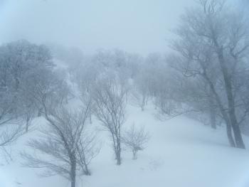 07スノーワールドへ.jpg