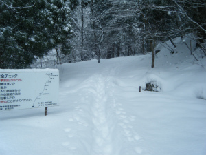 07登山道入り口.jpg