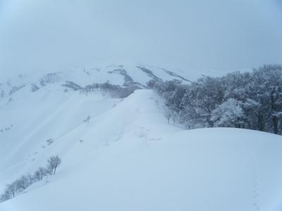 11稜線に出た.jpg