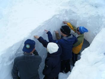 12雪面観察.jpg